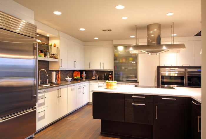 Atlanta Contemporary Kitchen